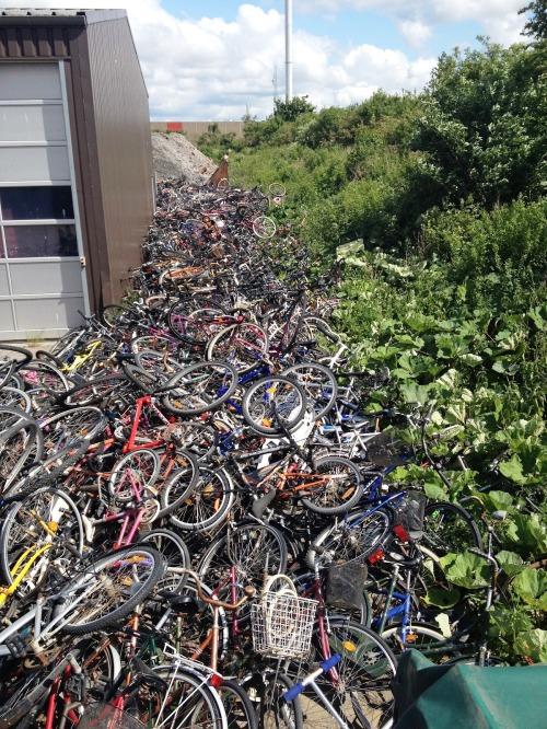 Stemningsbillede fra Hobro. Hvis ikke man kan finde sig en ny cykel i dette imponerende udvalg, skal man vist være et skarn.